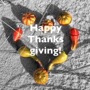 happy-thanksgiving-s